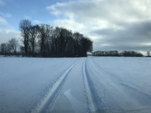 Spor i sneen